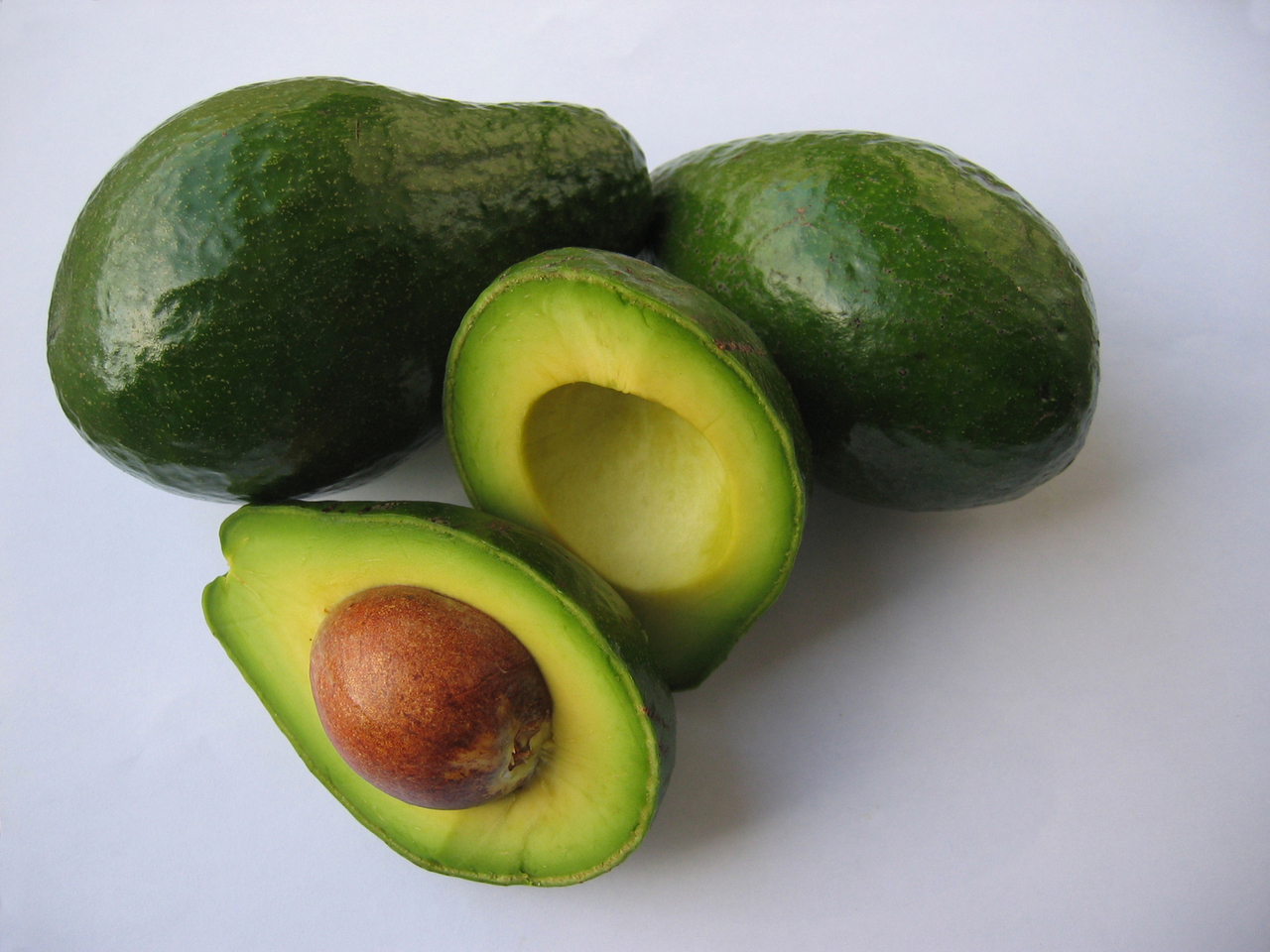 avocado anbau